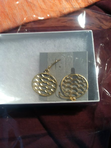 41Hawthorn Circle Enclosed Scale Earrings